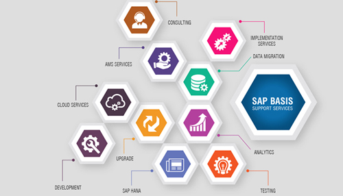 Sap Basis Training in Chandigarh