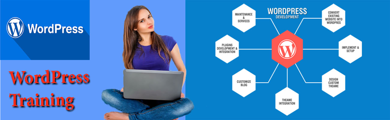 Wordpress Training Course in Chandigarh Mohali Panchkula
